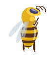 a bee or honey bumblebee insect character insect vector image