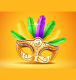 colorful feather masquerade carnivalfestive mask vector image vector image