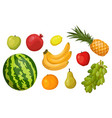 fruits banana watermelon apple pear grape vector image vector image