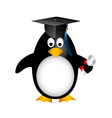 graduation penguin vector image