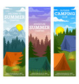 summer camp travel and tourism vector image