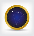triangulum australe constellation in golden circle vector image vector image