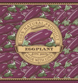vintage eggplant label on seamless pattern vector image vector image