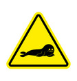 attention fur seal caution small sea calf yellow vector image vector image