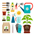 houseplants and indoor gardening icons vector image