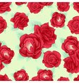 Red rose seamless pattern outline vector image vector image