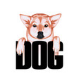 tshirt print dog with dog isolated on white vector image