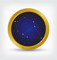vela and carina constellation in golden circle vector image vector image