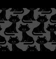 black cat seamless pattern pet ornament animal vector image vector image