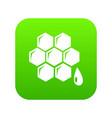 honeycomb icon green vector image