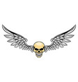tattoo wide wings and skinny dead skull vector image vector image