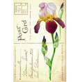 vintage postcard with flower vector image vector image
