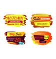 autumn big sale offer vector image