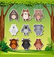 animal sticker pack set