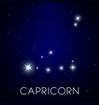constellation capricorn zodiac sign in night vector image