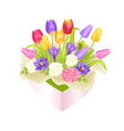 flowers oval decorative box luxury tulips crocus vector image vector image