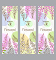 herbal tea collection fireweed vector image vector image