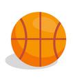 basketball soccer ball vector image