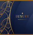 abstract luxury ornamental art design blue vector image