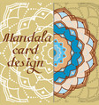 business mandala design cards vintage decorative vector image vector image