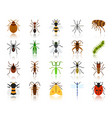 danger insect simple flat color icons set vector image vector image