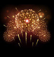 holiday festival golden firework independence day vector image vector image