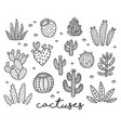 ink collection with cactuses vector image