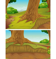 Nature scene with trees in the park vector image