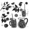 black-white set lemons and lemonade vector image