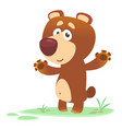 cartoon brown bear waving hands and presenting vector image