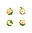fresh orange with a leaf vector image