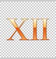 golden roman numeral number 12 xii twelve in vector image