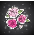 pink roses on black vector image vector image