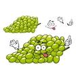 Cartoon green grape bunch character vector image vector image