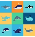 set of whale dolphin and shark icons vector image vector image