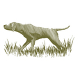 Woodcut Bird Dog vector image