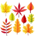 Autumn retro leaves set vector image vector image
