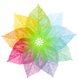 colorful spring leaves flower vector image vector image