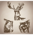 hand draw animals forest vintage vector image vector image