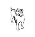 Jack Russell Terrier Standing Cartoon vector image vector image