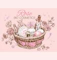 Rose basket vector image
