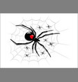 spider on codweb vector image vector image
