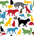 Seamless background with colorful cats and dogs vector image vector image