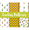 set of patterns with colorful cactus vector image vector image