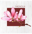watercolor magnolia flower vector image vector image
