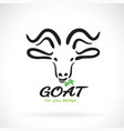 goat head design on a white background animal vector image