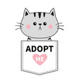 gray cat sitting in pocket adopt me pink vector image vector image