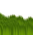 green grass vector image vector image
