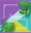 hello summer tropical design with palm leaves vector image vector image