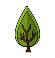 tree plant forest isolated icon vector image vector image